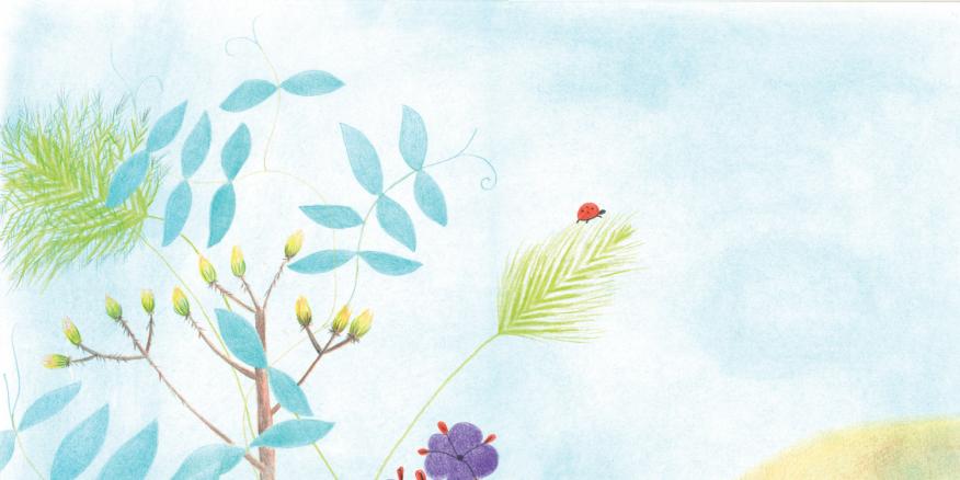 Ilustración para el cuento de María Teresa Arias la Arañana Pitana