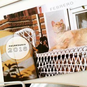Diseño de calendarios personalizados